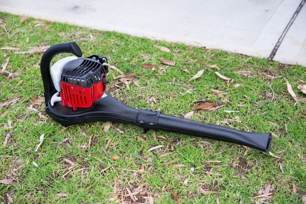 The 5 Best Commercial Leaf Vacuum Compared And Reviewed
