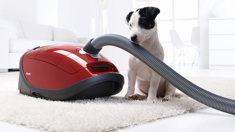 Miele Complete C3 Cat And Dog Canister Vacuum - Long Pile Carpet