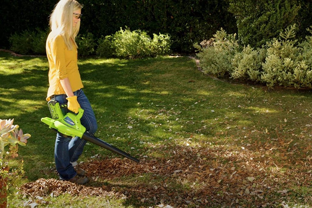 Greenworks 24322 Leaf Blower and Vacuum - Battery Powered