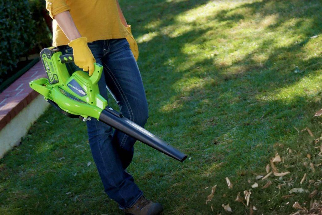 Greenworks 24322 Leaf Blower and Vacuum - Garden Tool